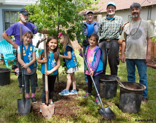 Photographer Karen Laslo took this photo of Girl Scout Daisy Troop #70037 planting a valley oak on Earth Day with the help of Chico Tree Advocates.